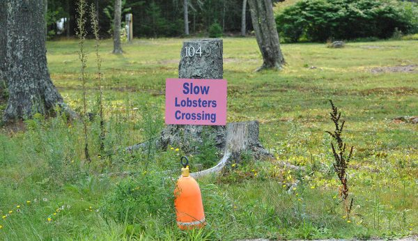 Slow Lobster Crossing Sign